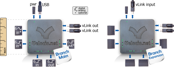 Branch Velocio Net